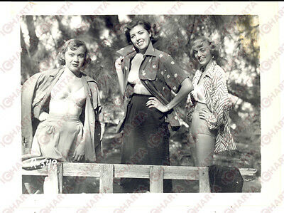 1965 ca USA - EROTICA VINTAGE Three women posing in a forest *PHOTO