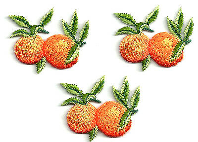 (Set Of Three- 3 ) Fruit - Orange - Citrus - Florida - Embroidered Iron On Patch