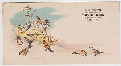 Fall River MA E. S. Brown Dry Goods Birds Trade Card