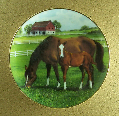 MORNING ON THE FARM Plate Mare Foal Horse Donald W. Patterson Danbury Mint