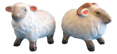Pair of Sheep - Ewe & Ram Ceramic Salt & Pepper Shakers