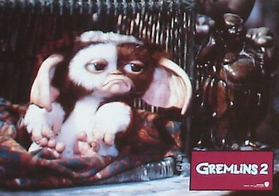 GREMLINS 2 - Lobby Cards Set - Phoebe Cates, Christopher Lee, Joe Dante - GIZMO