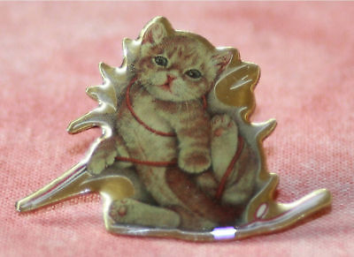 Pins Chat Chaton Et Ficelle