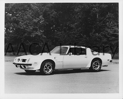 1979 Pontiac Trans Am Limited 66 Factory Photo Picture Ref. #69661