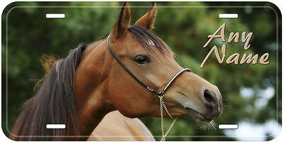 Horse Personalized Aluminum Any Name Novelty Auto License Plate H11