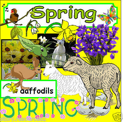 SPRING TOPIC PRIMARY TEACHING RESOURCES KS1 EYFS Childminder SEASONS Resource cd