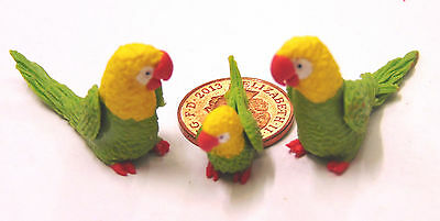 1:12 Scale 2 Parents & A Baby Green/Yellow Parrot Dolls House Exotic Birds P17