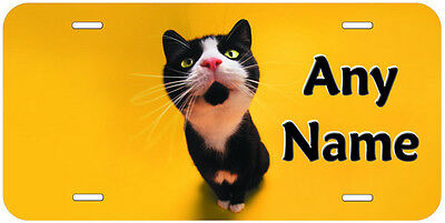 Miau Personalized Cat Aluminum Any Name Novelty Car License Plate