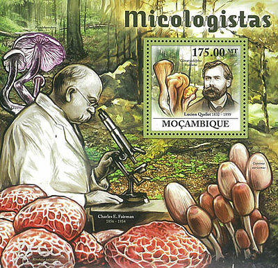 Mozambique 2011 Stamp, MOZ11608B Mycologists & Mushrooms, Famous People, Plant