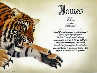 """Tiger 2"" Name Meaning Prints Personalized (Animal, Nature, Cat)"
