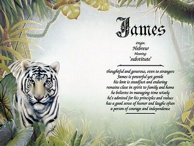 """White Tiger"" Name Meaning Prints Personalized (Animals, Cat, Nature)"