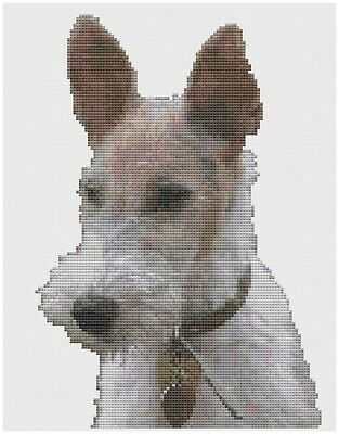 Tibet TERRIER DOG CROSS STITCH KIT DA florashell