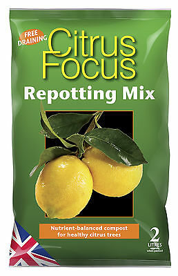 Citrus Focus Repotting Mix 2L - Lemon Lime Orange Tree Compost