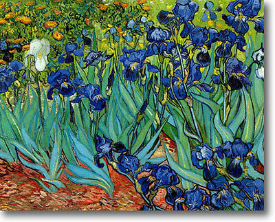 HUGE Van Gogh Irises  Stretched Canvas Giclee Art Repro Print ALL SIZES