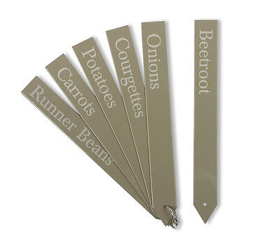 Set of 6 Large Plant Tags in Gooseberry by Garden Trading Company