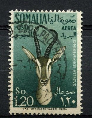 Somalia 1955 SG#295, 1s20 Air, Gazelle Used #A68771