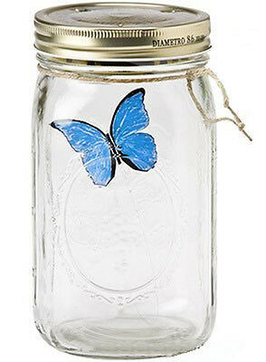 My Butterfly In A Jar - Blue Morpho Butterfly - From The Butterfly Collection