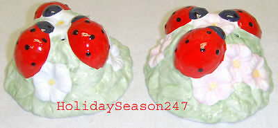 Lenox Butterfly Meadow Ladybug Salt And Pepper Shakers New Kitchenware Container
