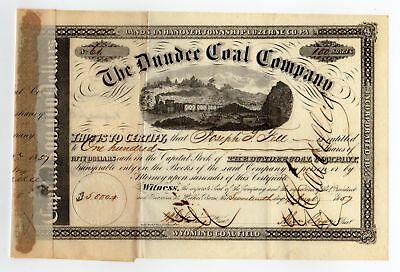 Dundee Coal Company Stock Certificate