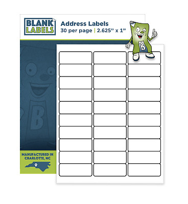 300 - 2.625 x 1 Blank Laser / Ink Jet Mailing Adhesive Address Labels 1 x 2 5/8