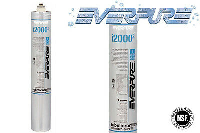 Everpure Ice Filtration Replacement Cartridge 1.67 Gpm Model Ev9612-22