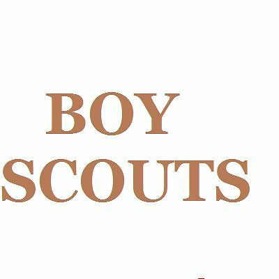 BoyScouts.us Amazing Boy Scout domain name - great for a blog site