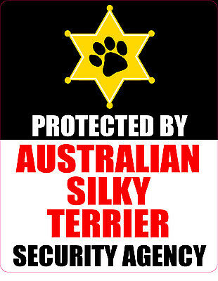 Protected By Australian Silky Terrier  Security Agency Sticker