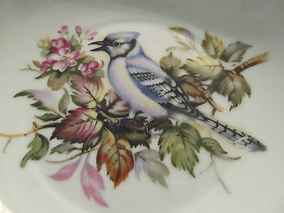 Norcrest ~ Blue Jay ~ Bowl ~ Fine China