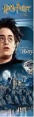 *harry Potter Rowling Daniel Radcliffe Door Poster Sealed Film New Official*