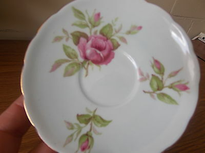 Vintage Antique Collectable Retro Foley Saucer Roses with Blue