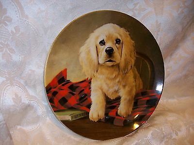KNOWLES SHIRT TALES COCKER SPANIEL PLATE 1988 6TH ISSUE FIELD PUPPIES