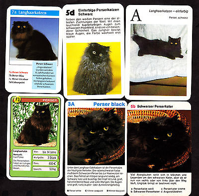 Lot Of 12 Different Vintage PERSIAN Cat Cards