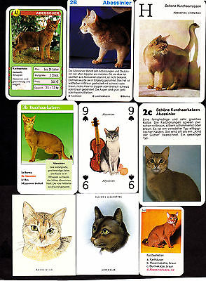 Lot Of 15 Different Vintage ABYSSINIAN Cat Cards