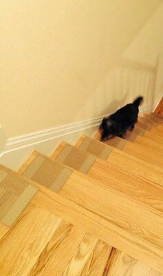 Pet Safety Products, Pet Stair Tread