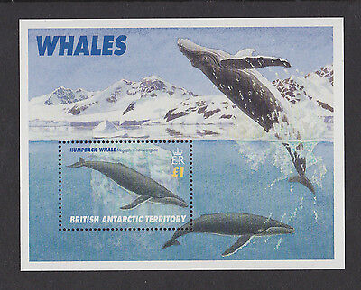 British Antarctic Territory 1996 Whales M/Sheet Sg Ms 269 Mnh.