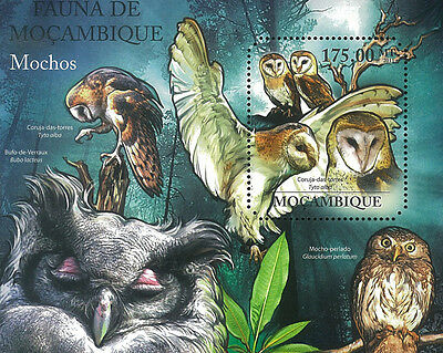 Mozambique 2011 Stamp, MOZ11404B Owls Tyto capensis, Bird, S/S