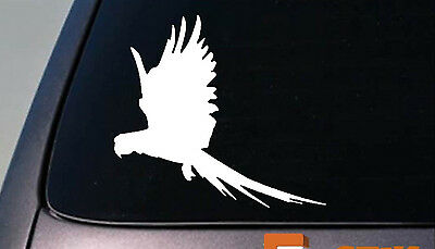 "Macaw flying sticker decal 6"" size *D730*"
