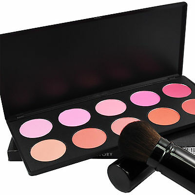 10 Colors Matte Shimmer Face Blush Brush Eyeshadow Makeup Cosmetics Palette 613Y