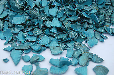 Turquoise Sea Shells Table Garden Plants Craft Pebbles Nuggets Glass Pot Pourri