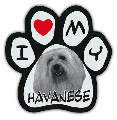 Picture Paws | Dog Paw Shaped Magnets: I LOVE MY HAVANESE | Car Magnet
