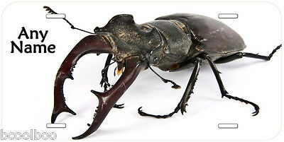 Stag Beetle Aluminum Novelty Car Tag License Plate P01