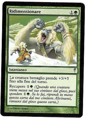 2x Ridimensionare - Resize carte MAGIC Coldsnap (ITALIAN CARD) EXC