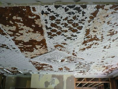1800's Tin Ceilings - Beautiful original NJ Estate