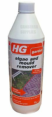 Hg Hagesan Moss Algae Mould Green Slime Remover For Patios Paving And Walls 1L
