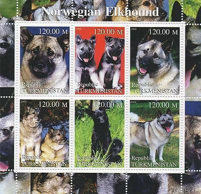Norwegian Elkhound Cute Puppy Dog Canine Turkmenistan 2000 Mnh Stamp Sheetlet