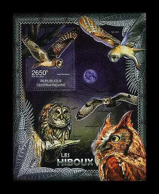 Central African Stamp, 2012 CAR INT1207B Owl Night Birds Asio flammeus,S/S