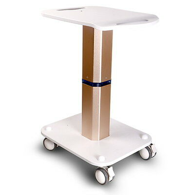 Newly Iron Stand Assembled Stand For Placing Weight Loss Cavitation Slimming