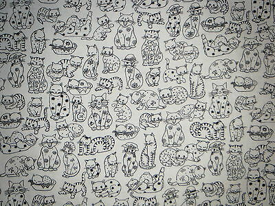 Black & White Kitty Cat Feline Drawings Valance Curtain Cute Poses