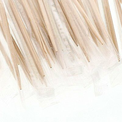 White Birch 100% Wood Mint Individual Sanitary Wrapped Toothpicks Package of 500