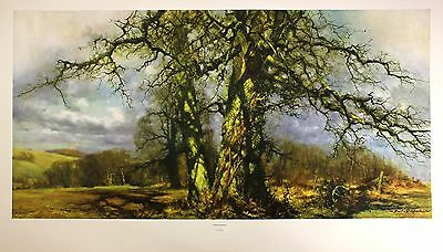 DAVID SHEPHERD bright intervals very rare print OUT OF PRINT last copies